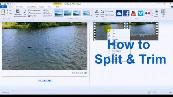 Windows Live Movie Maker 17.4 Latest